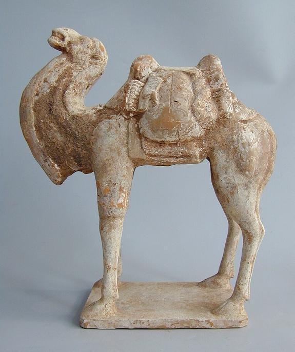 Chinese Archeologie - Tang Dynastie kameel met bepakking  618 - 907 AD ( met TL test)