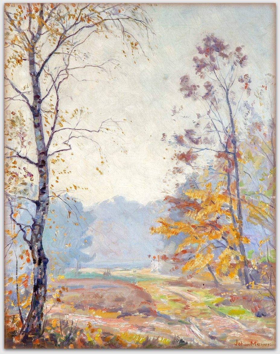 Johan Meijer - 'Zonnige Herfstmorgen' op de Larense heide